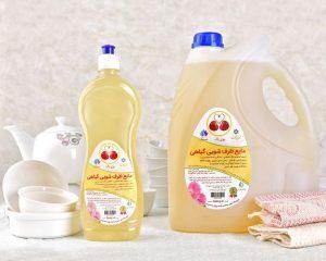 مایع ظرفشویی گیاهی ۴ لیتری | روزی پاک